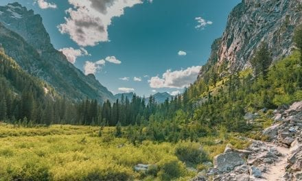 Trails near Jenny Lake Grand Teton – Hidden Falls, Inspiration Point and Cascade Canyon (VIDEO)
