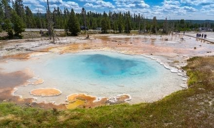 Top 5 Geysers in Upper, Mid and Lower Geyser Basin, Yellowstone (VIDEO)