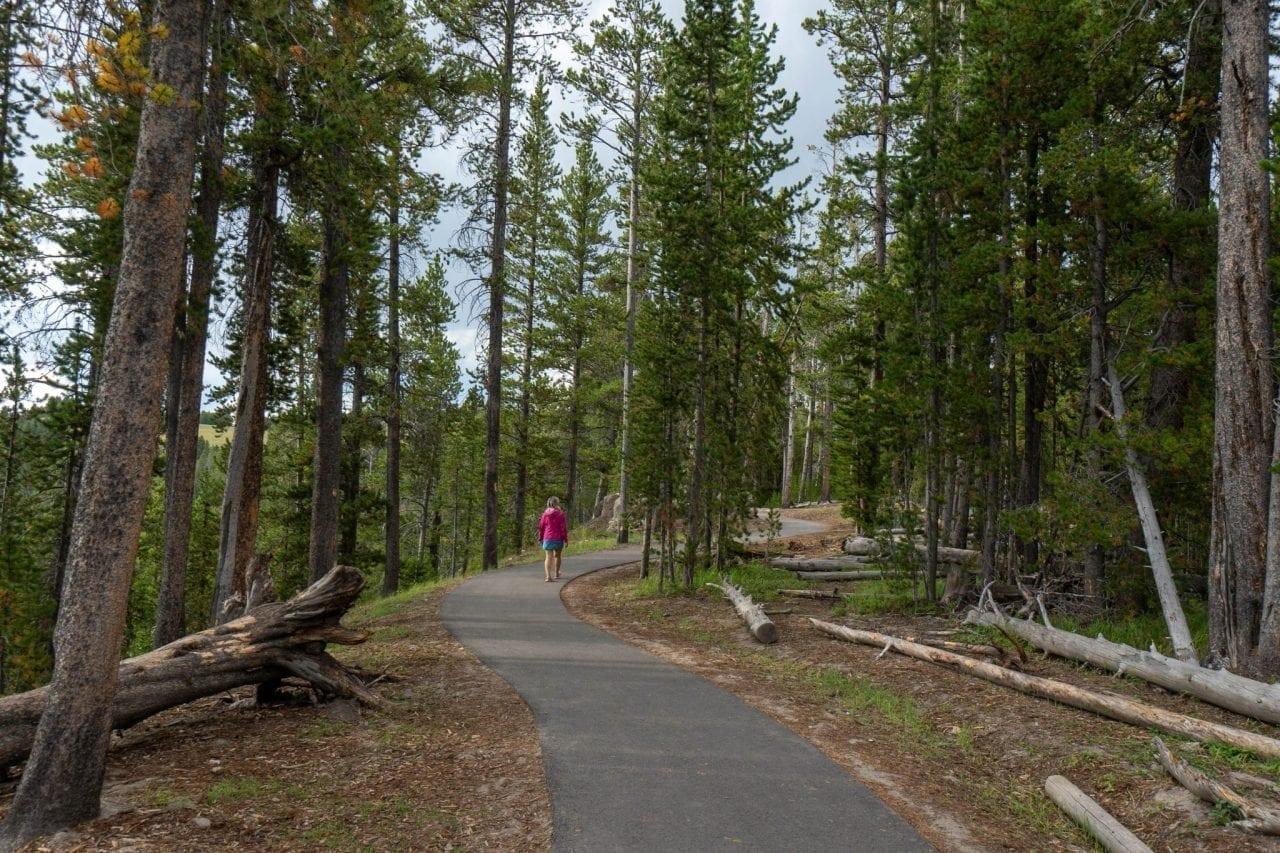 South Rim Trail in Grand Canyon of Yellowstone