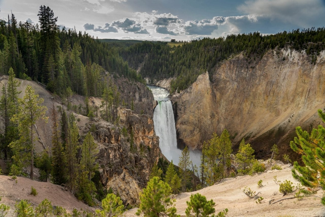 View of Lower Yellowstone Falls from South Rim