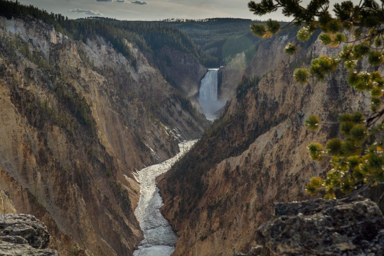 Vieew of Yellowstone Falls and River from Artists Point