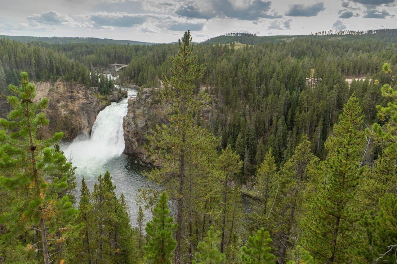Yellowstone Falls from South Rim Trail